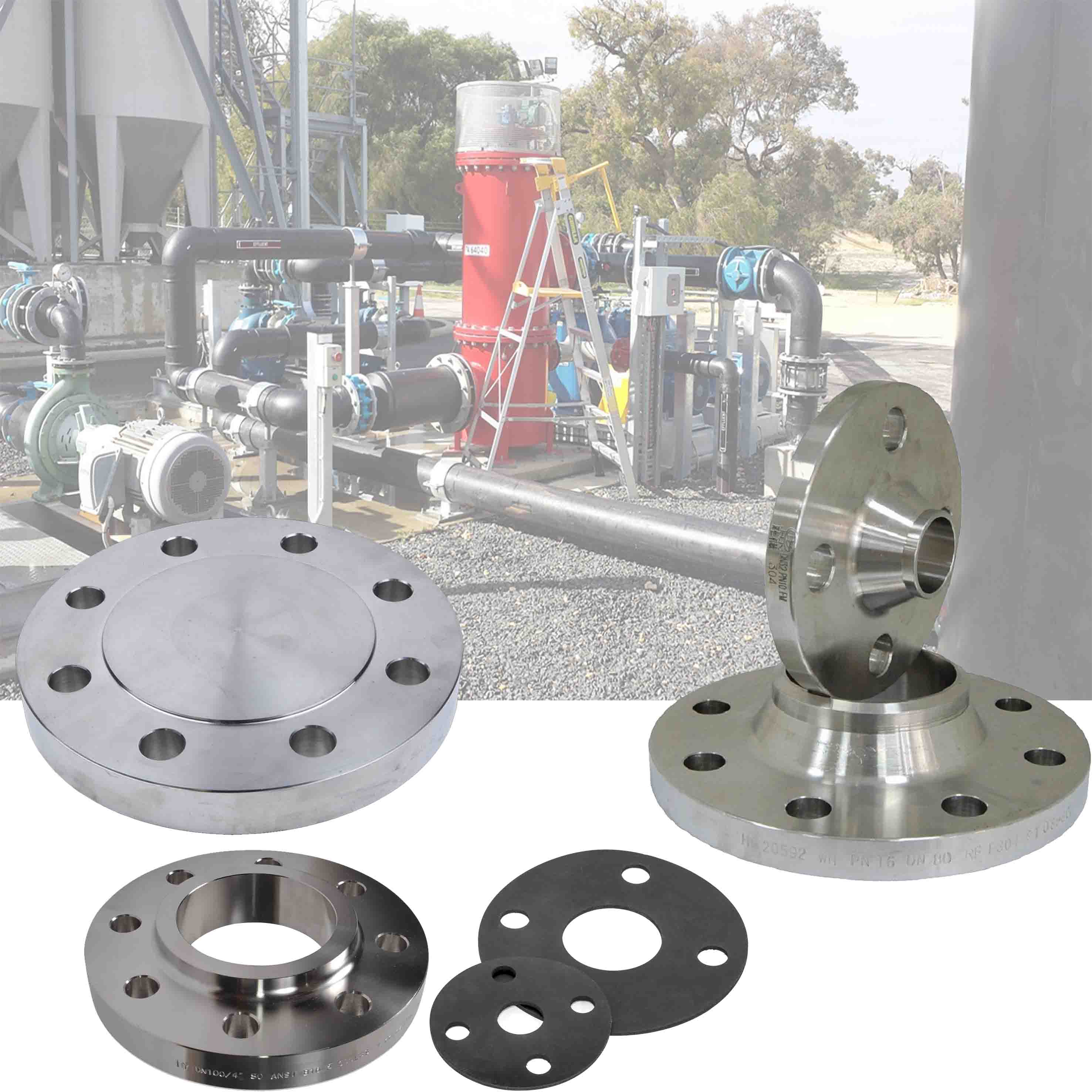 Flanges, Gaskets & Fasteners